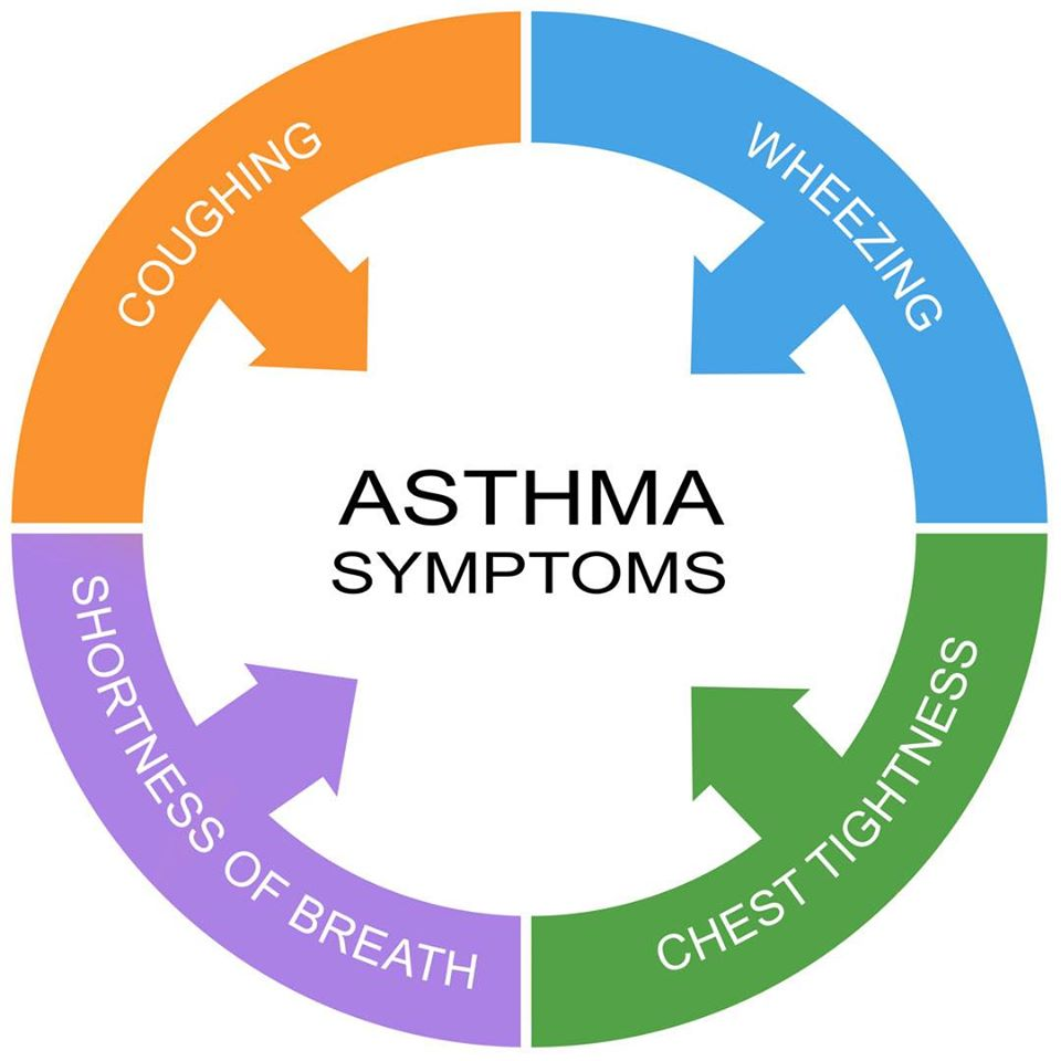 Asthma Cycle of care for preventive approach of cure, Doctors in Cranbourne